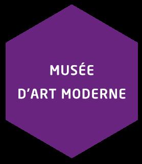 hover musée d'art moderne de saint etienne